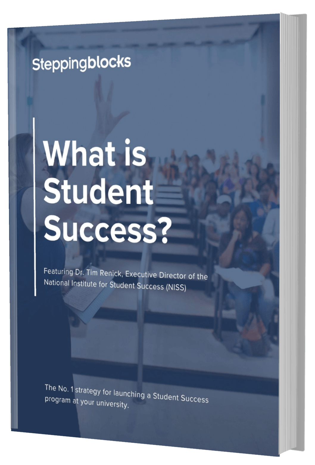 Steppingblocks What is Student Success (1)